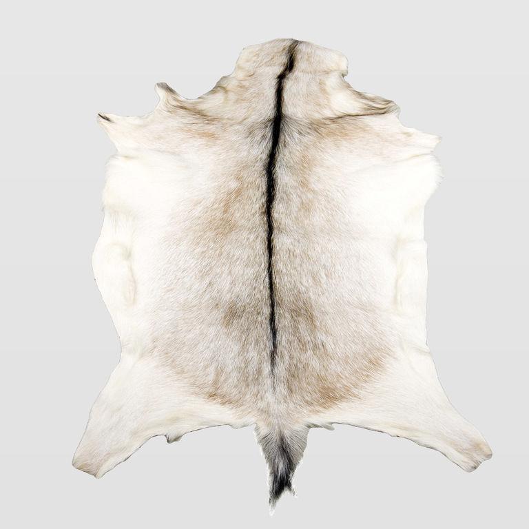 goat fur ALH0050