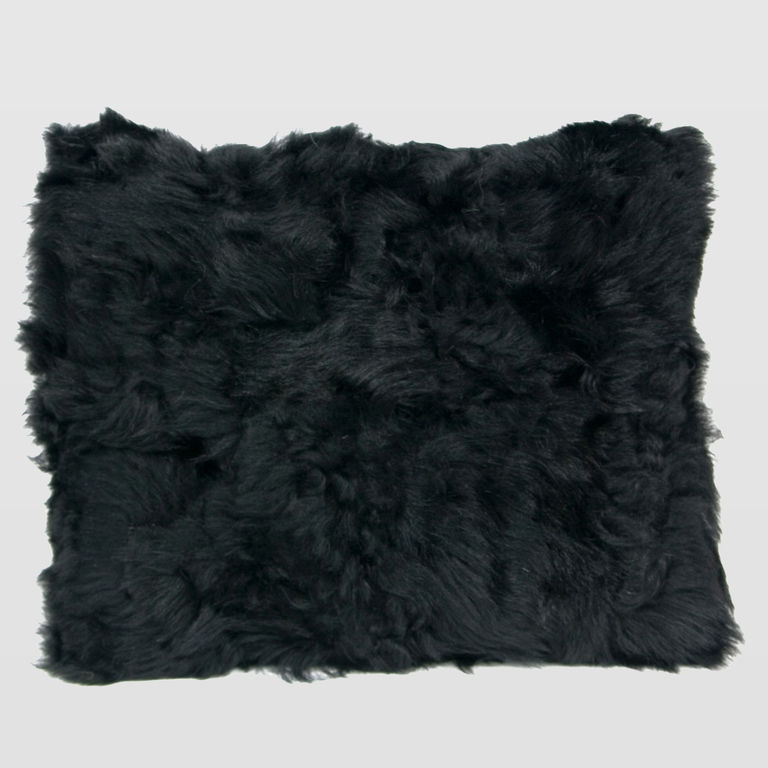 Black sheep fur APL0020